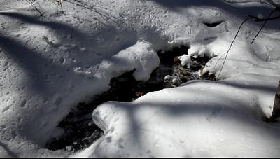 ADK Winter Video Still Life