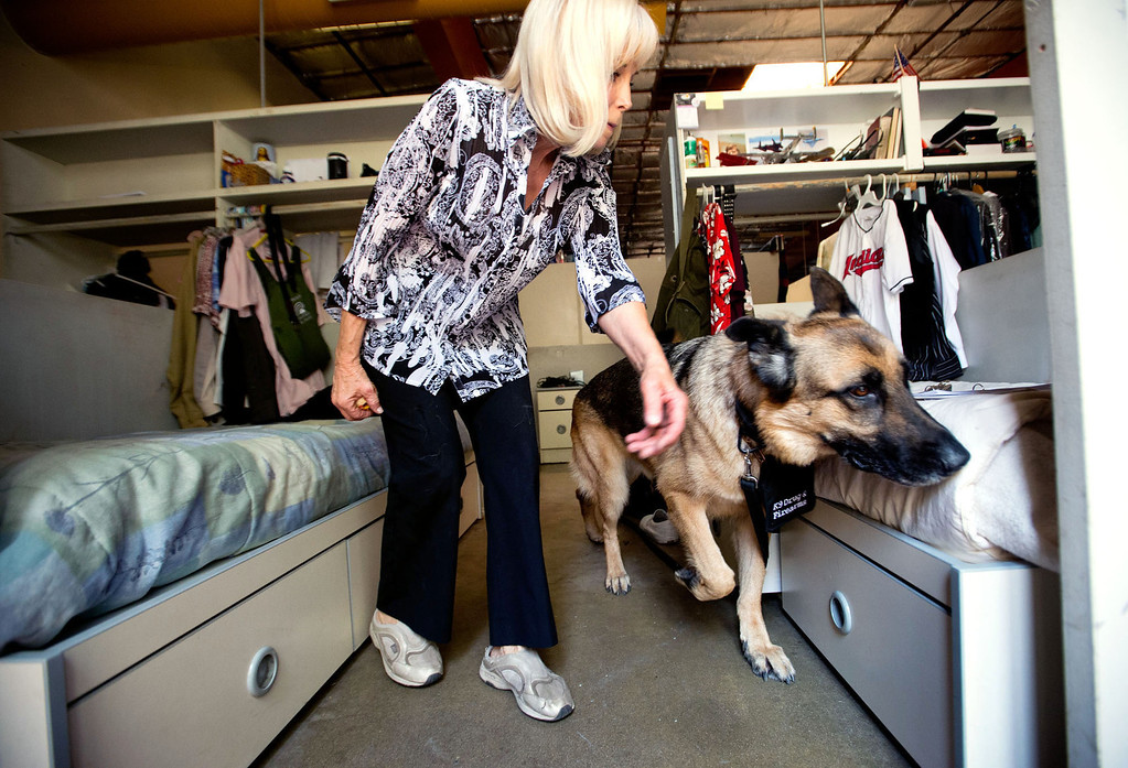 . Bruno, a drug and firearm dog, with his owner and handler, Cher Abellano, sniffs through residents belongings at Whittier Area First Day Coalition on Wednesday, June 26, 2013. Bruno and his handler, Cher Abellano, will visit the facility randomly throughout the year to conduct safety checks. (SGVN/Staff photo by Watchara Phomicinda)