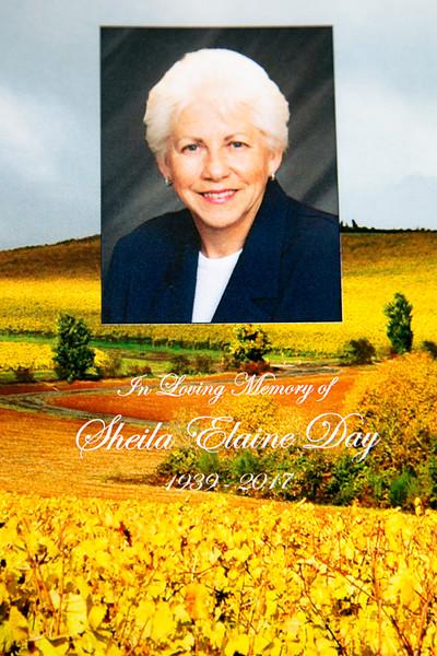 Sheila Day-2.JPG