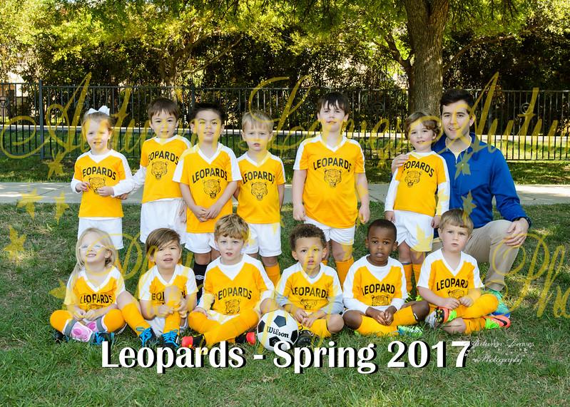 20170325 - #T9 Rookie  Leopards