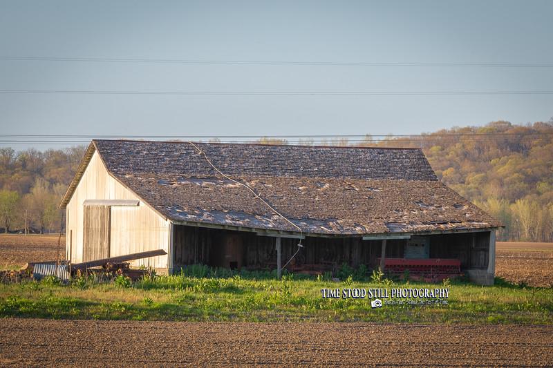 KC Landscape-15.jpg