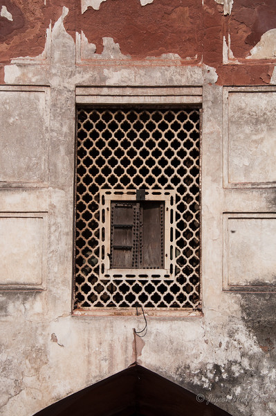 India-Delhi-6503.jpg