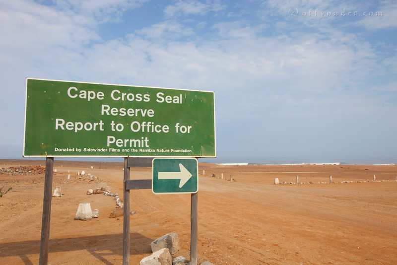 CAPE CROSS SEAL RESERVE, NAMIBIA -