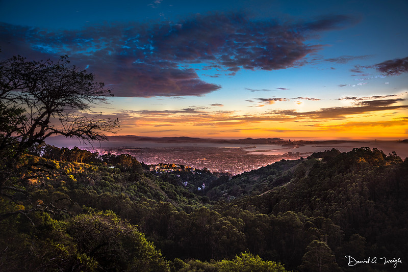 Berkeleyt Hills View+CC.jpg