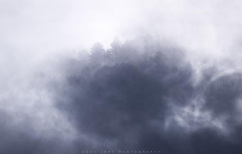 SkylineFog_web.jpg