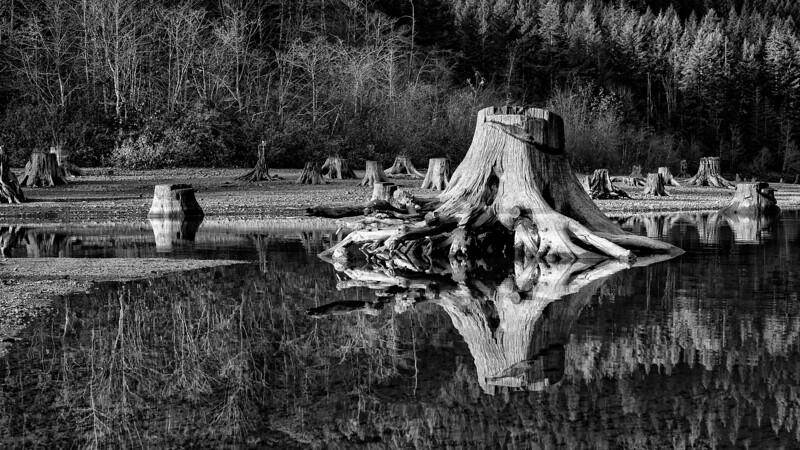 Taken with a borrowed Leica Monochrom.