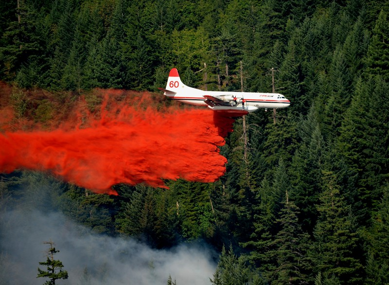 L188 Electra actioning a wildfire in Harrison Hot Springs BC - photo by Larry Scholle.jpg