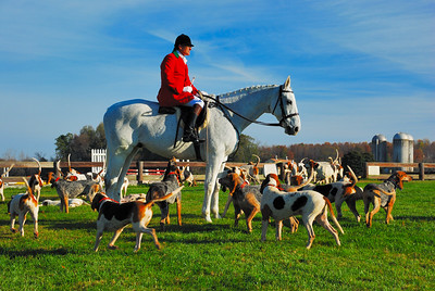 Red Mountain Hounds, Opening Meet, 2009