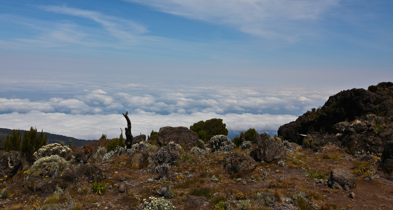 day 2 - then you slowly get above the clouds to a dry alpine desert