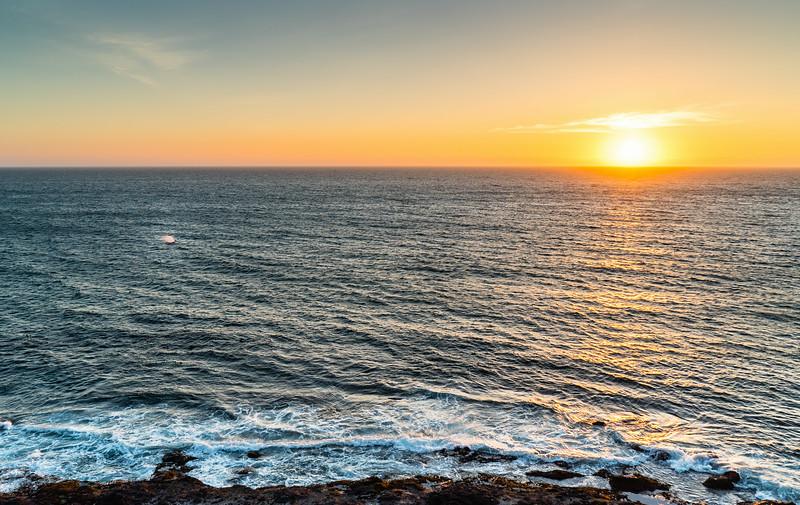 Gray whale sunset photobomb