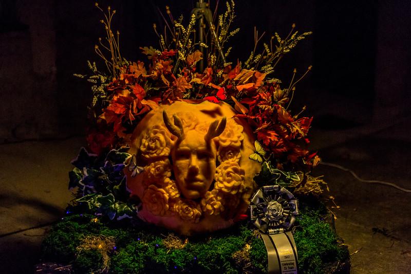 Mike Maney_Pumpkinfest 2017-30.jpg