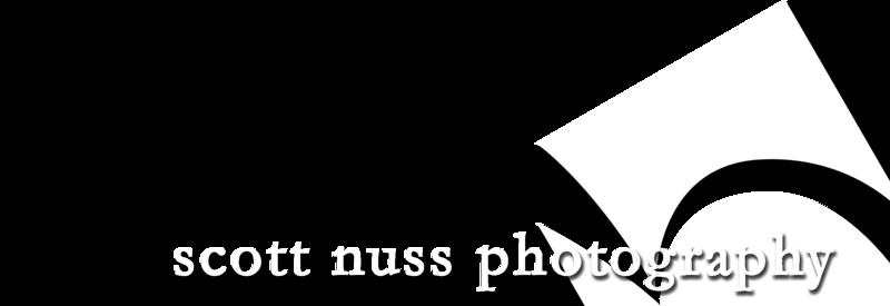 LogoSN02.png