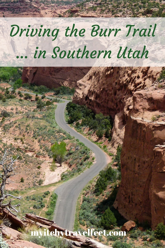 Text on photo: Driving the Burr Trail in Southern Utah. Photo: Ribbon of pavement snakes through the pink walls of Long Canyon in southern Utah.