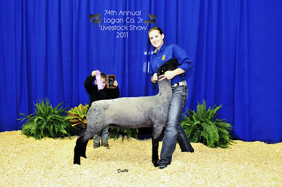 Logan County Livestock Show