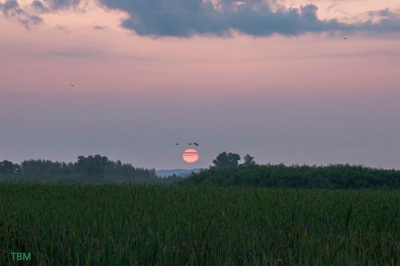 Horicon Sunrise.