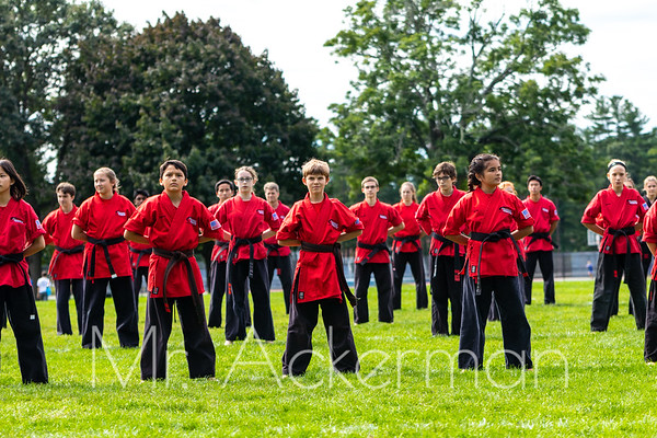 Bedford Day Parade and Demo 2018