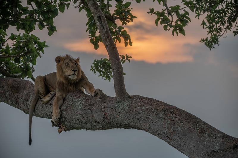 Uganda_T_QE-712-HDR.jpg