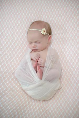 Walker Newborn Session