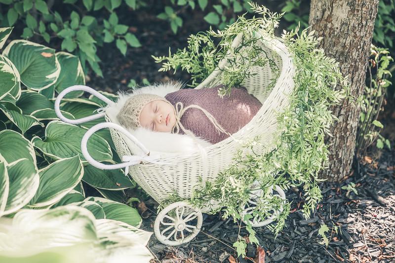 Rockford_newbornphotography_A_011.jpg
