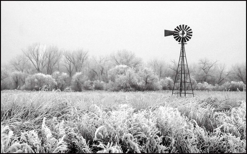 001.MICHAEL  SALES.1.FROSTY THE WINDMILL .AS.JPG
