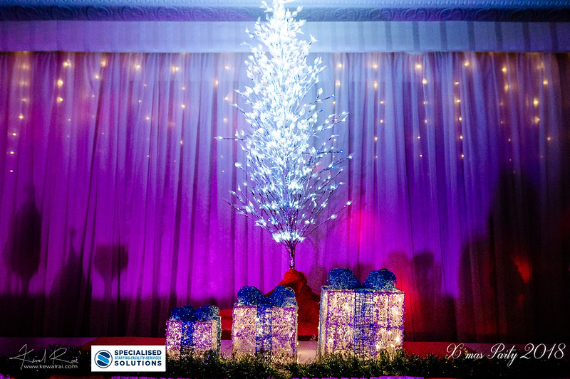 Specialised Solutions Xmas Party 2018 - Web (56 of 315)_final.jpg