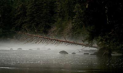 creeks & streams