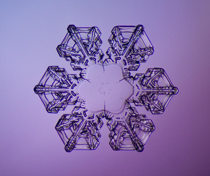 snowflake-0262-Edit.jpg