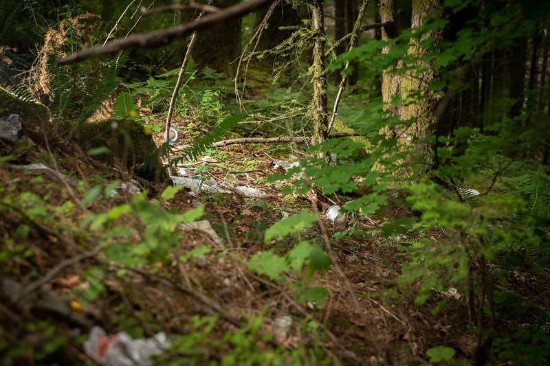 1907_01_garbage-08785.jpg