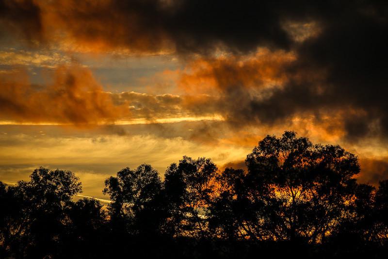 February 8 - Clouds.jpg