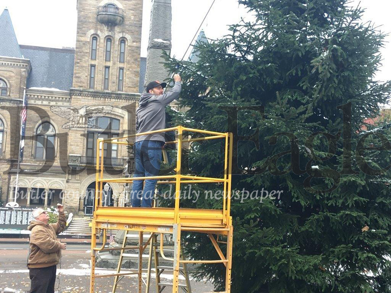 Matthew McCune stretches a pole to manipulate a string of lights around the centerpiece Christmas tree at Diamond Park as his father, Butler County Judge Timothy McCune, helps out below. Butler Downtown organized the annual tree decoration Saturday. Matthew McCune, the group's vice president, coordinated the event, while his father volunteered.