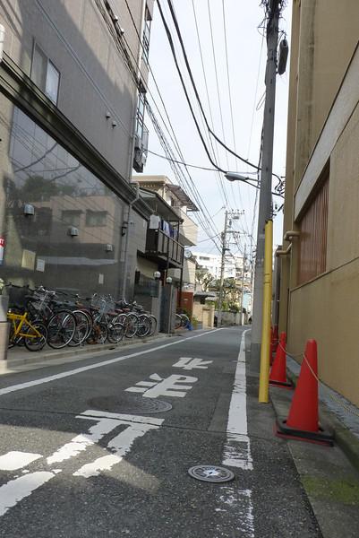 2011 NOV 8 Tokyo