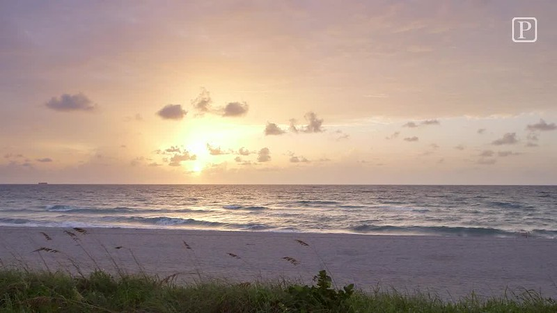 20160804_CLO_palm_beach_sunrise_jrf.mp4