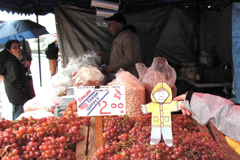 Flat Stanley tries the grapes at the Farmers Market in San Francisco