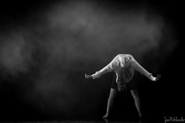 Dansens Dag 2014