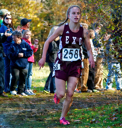 State Cross Country Championship; 11/2