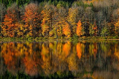 Finger Lakes of New York