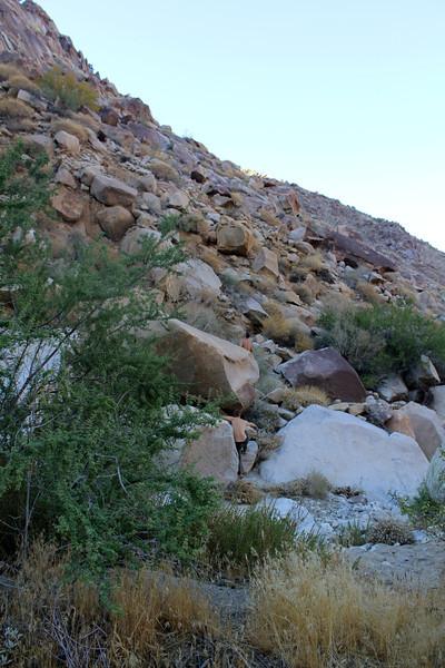 05 Cougar Canyon (138).JPG