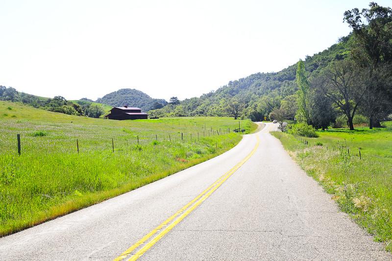 websize_Old Creek Road in Spring-0821.jpg
