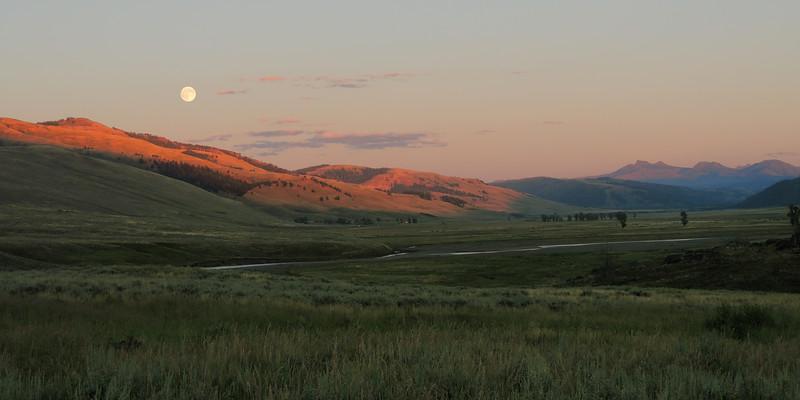 Yellowstone (37).jpg