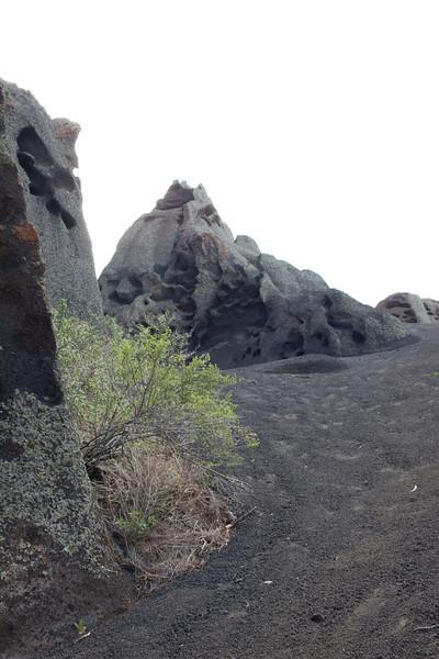 Arizona2014-138.jpg