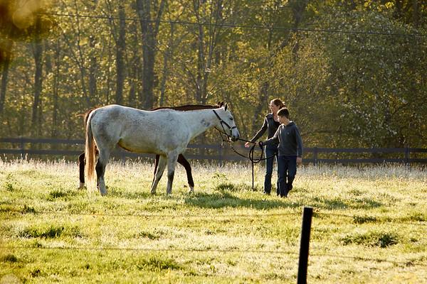 Bloomfield Farm - Saratoga Springs, NY
