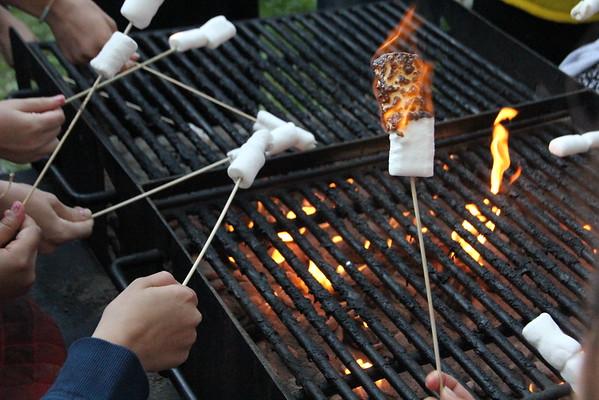Barbeques and Bonfires