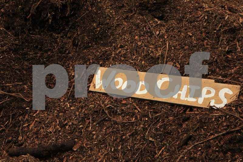 Wood chips compost 5007.jpg