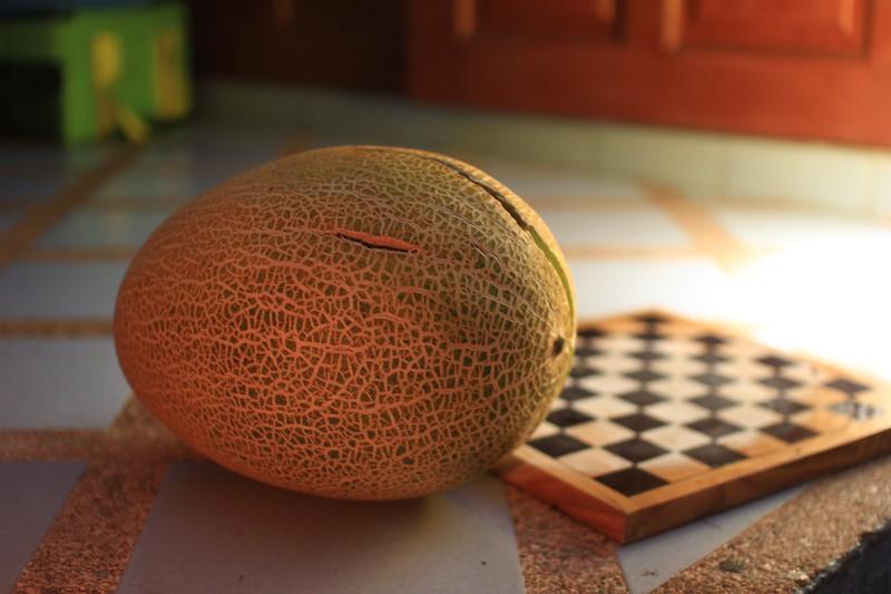 Sweet Melon Nostalgia