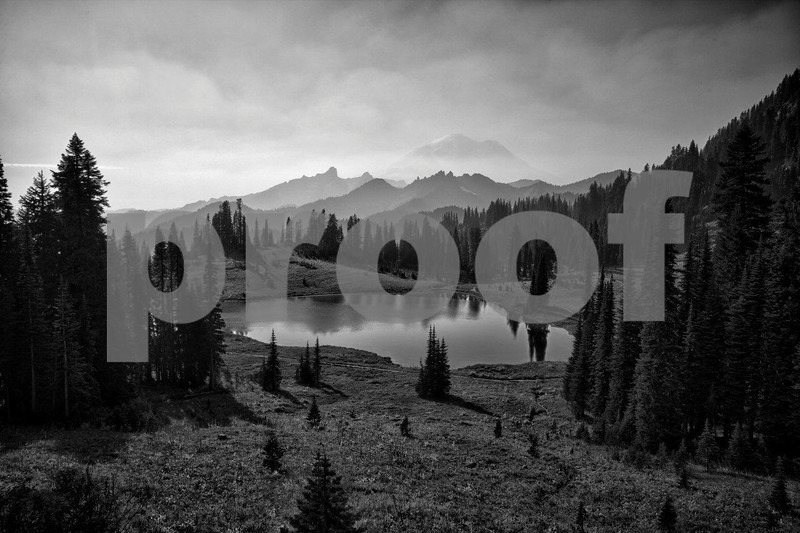 Mt. Rainier & Tipsoo Lake 0760_HDR b&w.jpg