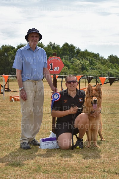Capable Canines Fun Dog Show