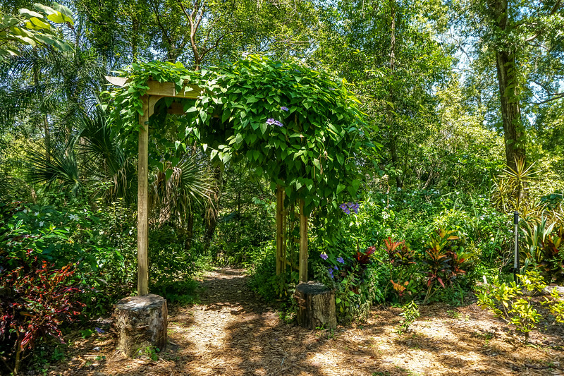 Mead-Gardens-50.jpg