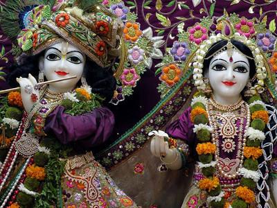 Shri Radhe Radhe