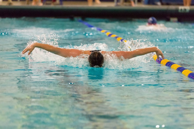 MMA-Swimming-2019-II-042.jpg