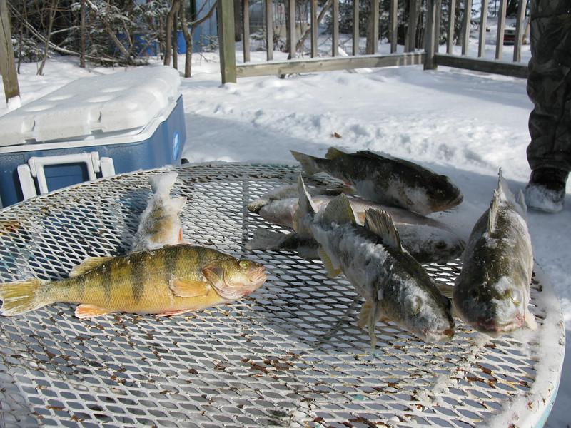 Ice Fishing Kris -78.jpg
